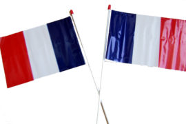 Hand-Flags-French-L